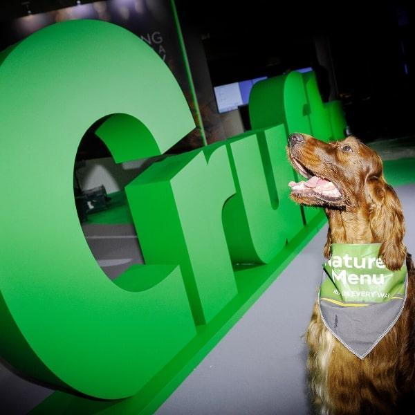 Win Tickets to Crufts